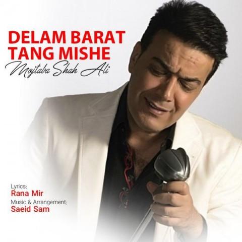 دانلود موزیک جدید مجتبی شاه علی دلم برات تنگ میشه