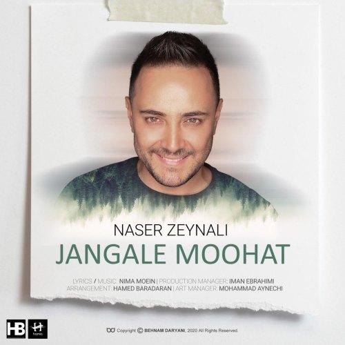 دانلود موزیک جدید ناصر زینلی جنگل موهات