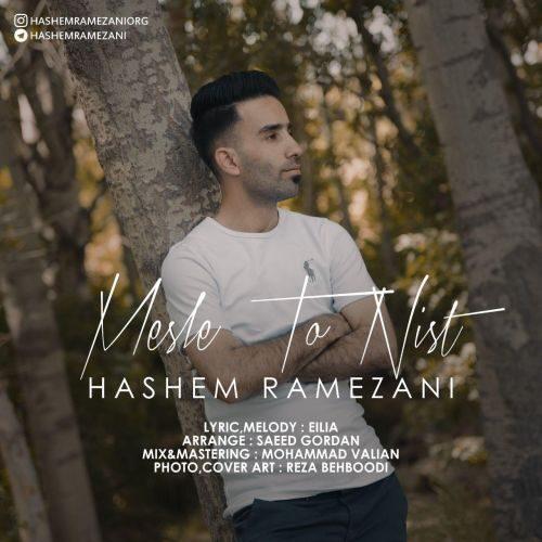 دانلود موزیک جدید هاشم رمضانی مثل تو نیست